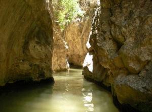 Wading through the Potami river
