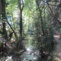 Hike to Potami waterfalls