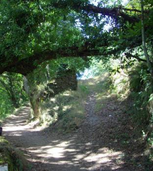 samos trail